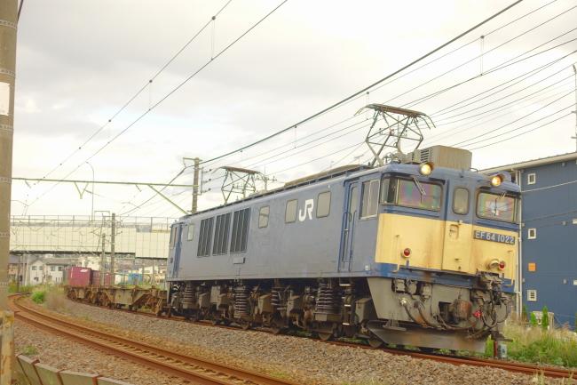 DSC02311-1.JPG